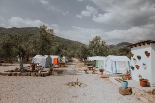 zeus camping24